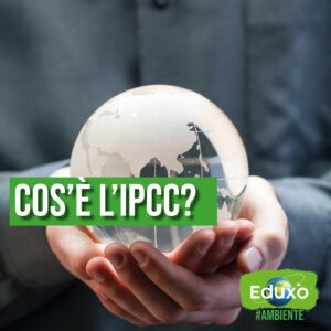 Read more about the article IPCC (Intergovernmental Panel on Climate Change)