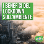 Read more about the article Lockdown e crisi ambientale