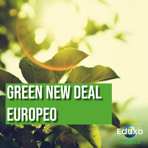 You are currently viewing Green new deal europeo
