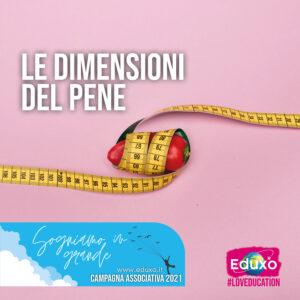 Read more about the article Le dimensioni del pene
