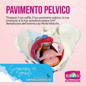 Read more about the article Pavimento Pelvico