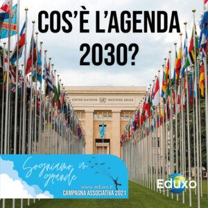 Read more about the article Cos'è l'agenda 2030?