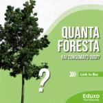 Quanta foresta hai consumato oggi?