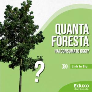 Read more about the article Quanta foresta hai consumato oggi?